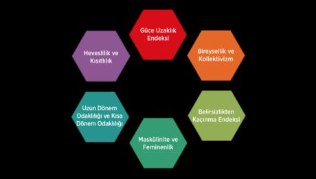 Hofstede Kulturel Modeli